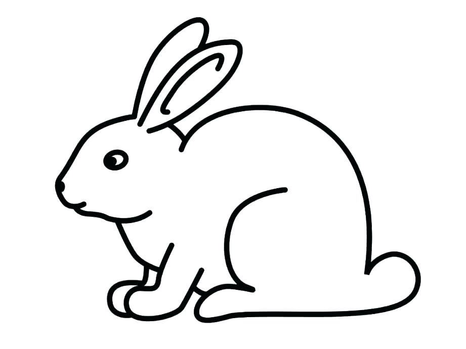 Rabbit Coloring Pages Www Shop Nyctours Com