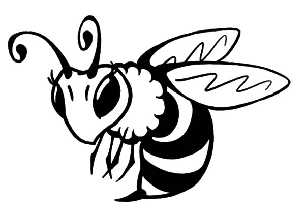 - Bee Coloring Pages Collection - Whitesbelfast
