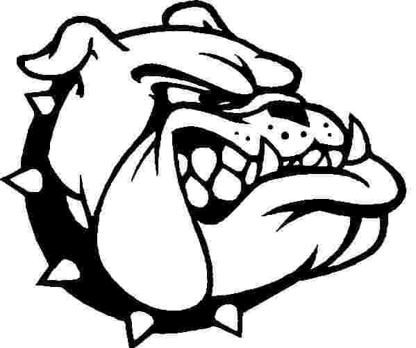 Bulldog Coloring Pages Picture Whitesbelfast Com