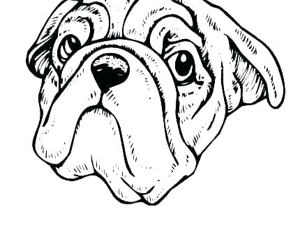 coloring pages : Free Printable Animal Coloring Pages Elegant Dog ... | 330x440