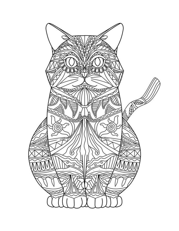 - Cat Coloring Pages For Adults Pictures - Whitesbelfast