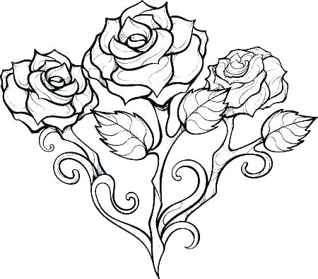 Rose Coloring Pages Pictures Whitesbelfast