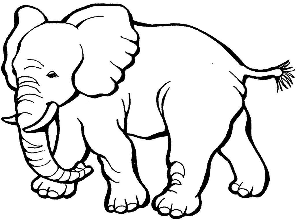 Coloring Animals For Kids Www.robertdee.org