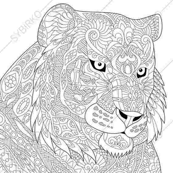 Tigre Coloring Pages Pictures Whitesbelfast