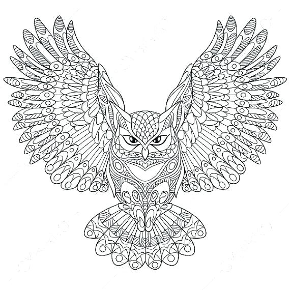 Owl Coloring Pages For Adults Picture Whitesbelfast