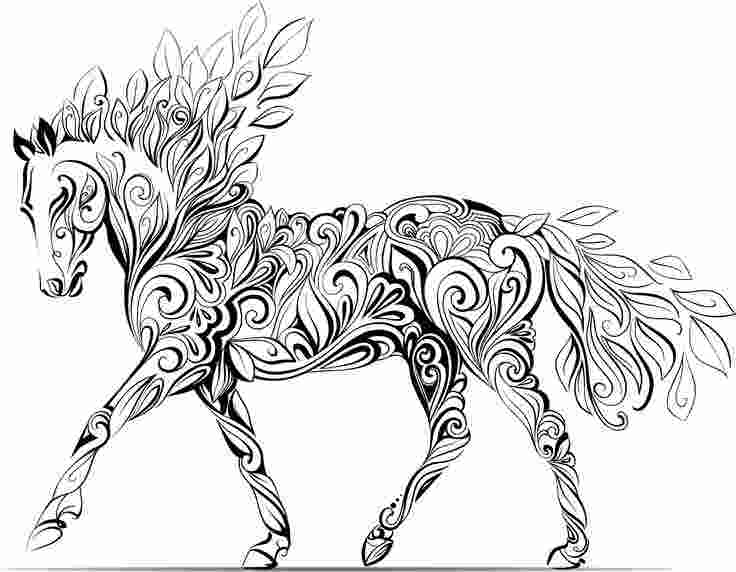 Horse Coloring Pages For Adults Pictures Whitesbelfast Com