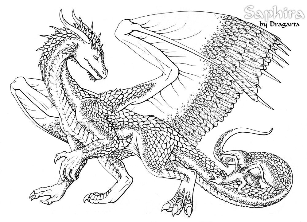 Dragon Coloring Pages For Adults Collection - Whitesbelfast.com