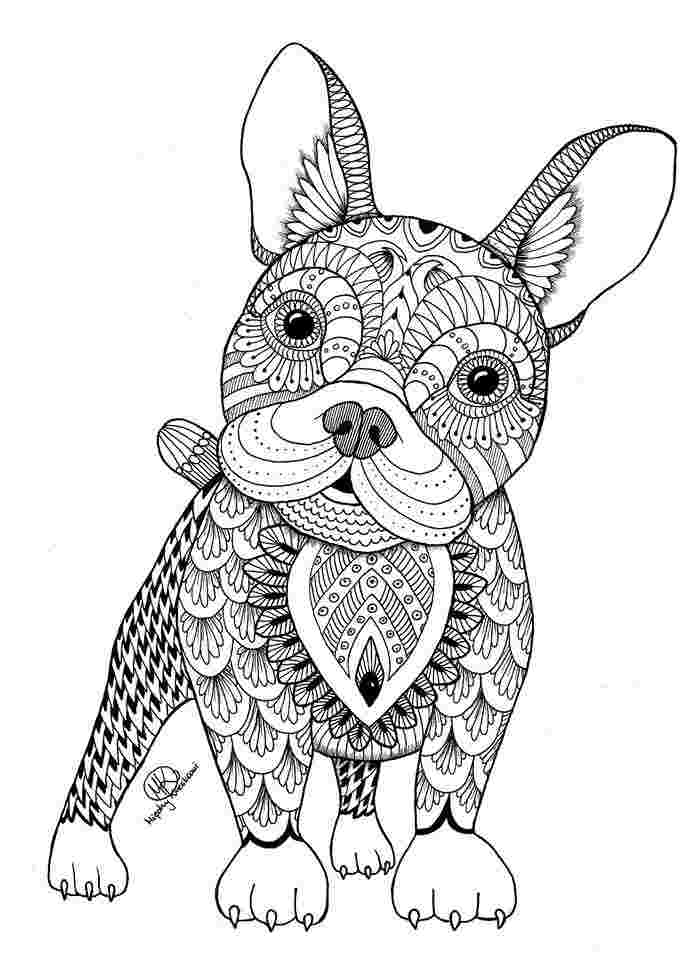 Adult Animal Coloring Pages Ideas - Whitesbelfast.com