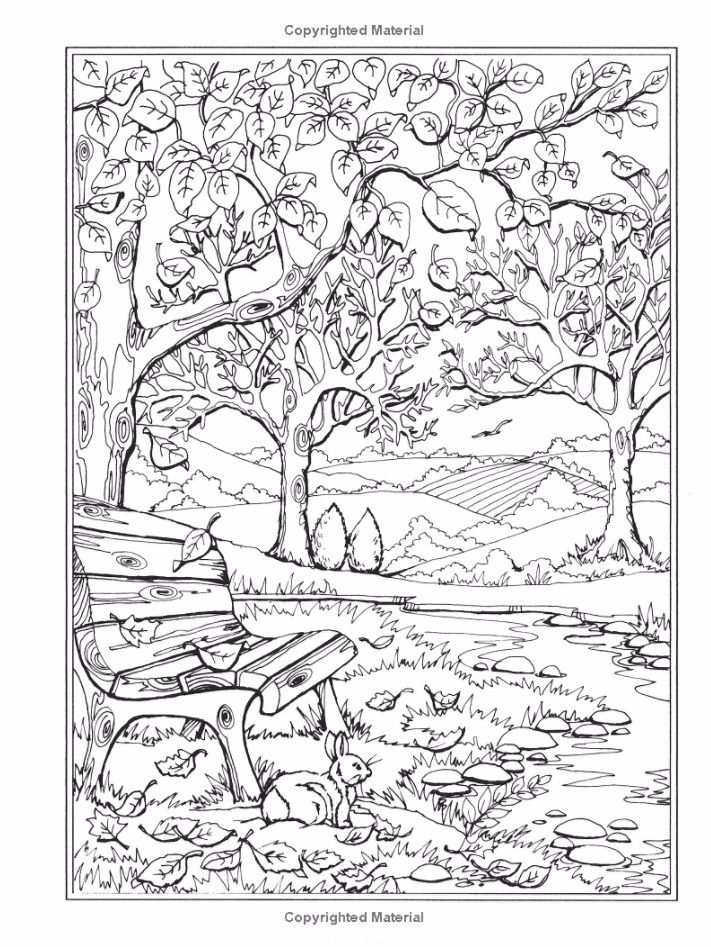Forest Coloring Pages Ideas - Whitesbelfast.com