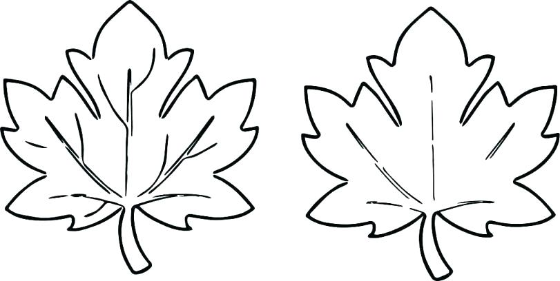 Leaves Coloring Pages Idea Whitesbelfast Com