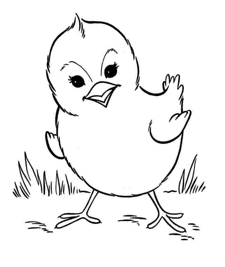 Coloring Pages For Kids Animals Pictures Whitesbelfast Com