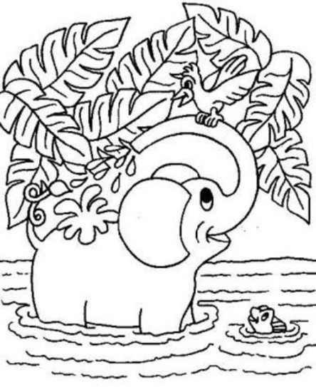 - Free Coloring Pages Of Animals Picture - Whitesbelfast