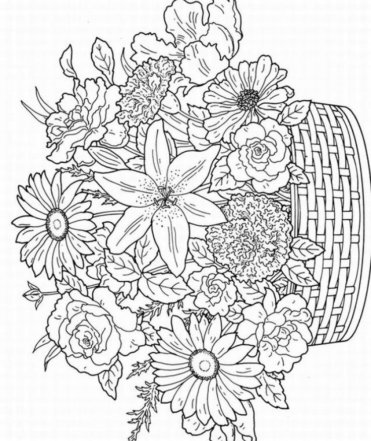Flower Coloring Pages For Adults Picture Whitesbelfast Com