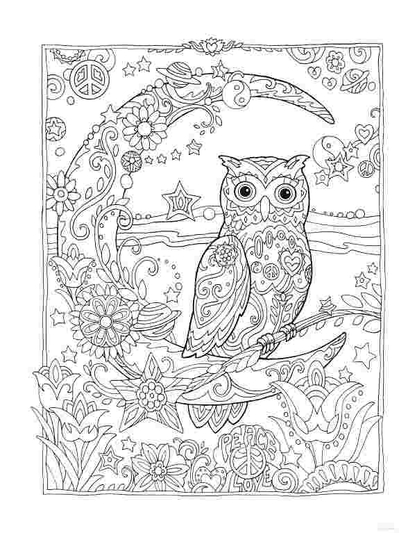 Colouring Books For Adults Owls Coloring Pages For Kids