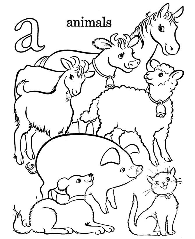 Animal Coloring Pages For Kids Pictures - Whitesbelfast