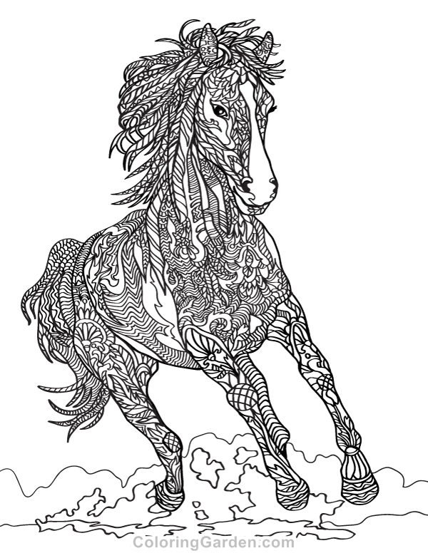 Horse Coloring Pages For Adults Pictures - Whitesbelfast