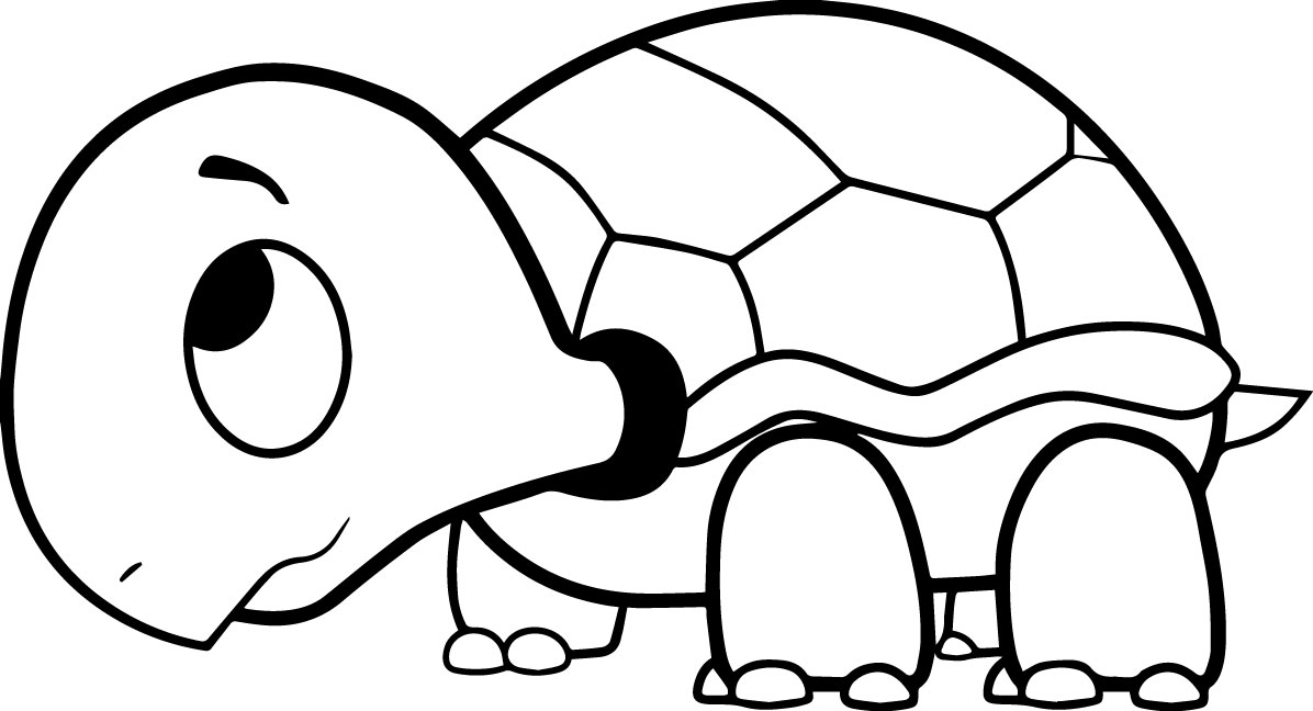 - Turtle Coloring Pages Gallery - Whitesbelfast