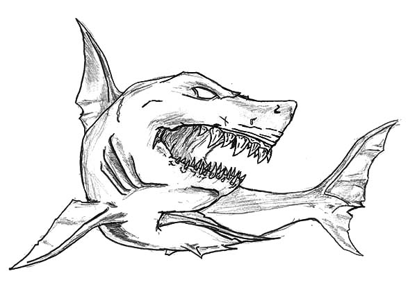 Shark Coloring Pages Collection Whitesbelfast Com