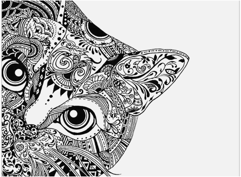Adult Coloring Pages Animals Collection Whitesbelfast Com
