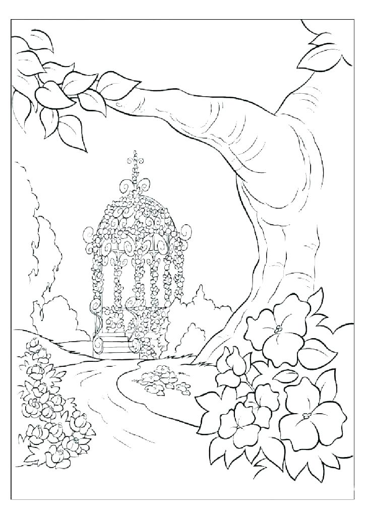 Coloring Pages For Adults Nature Pictures Whitesbelfast Com