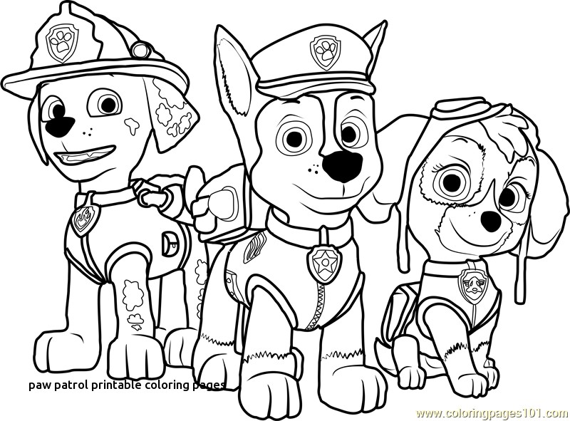 - Paw Patrol Coloring Pages Idea - Whitesbelfast