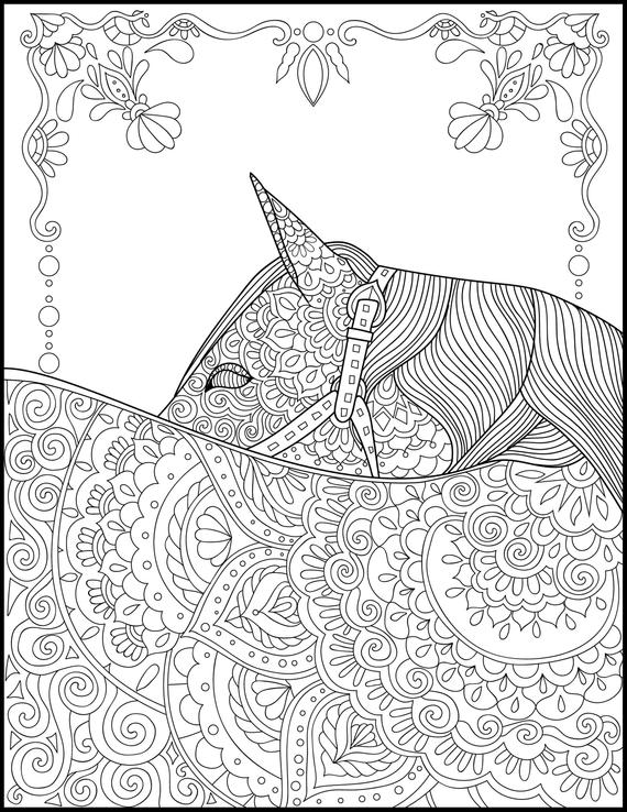 Horse Coloring Pages For Adults Pictures - Whitesbelfast.com