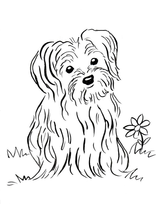 Puppies Coloring Pages Gallery - Whitesbelfast