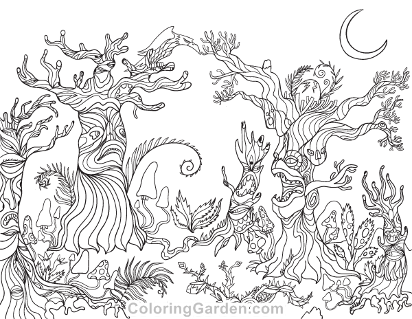 Forest Coloring Pages Ideas - Whitesbelfast