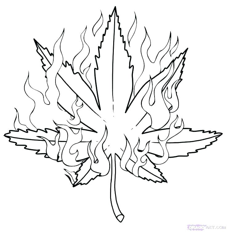 Weed Coloring Pages Ideas Whitesbelfast
