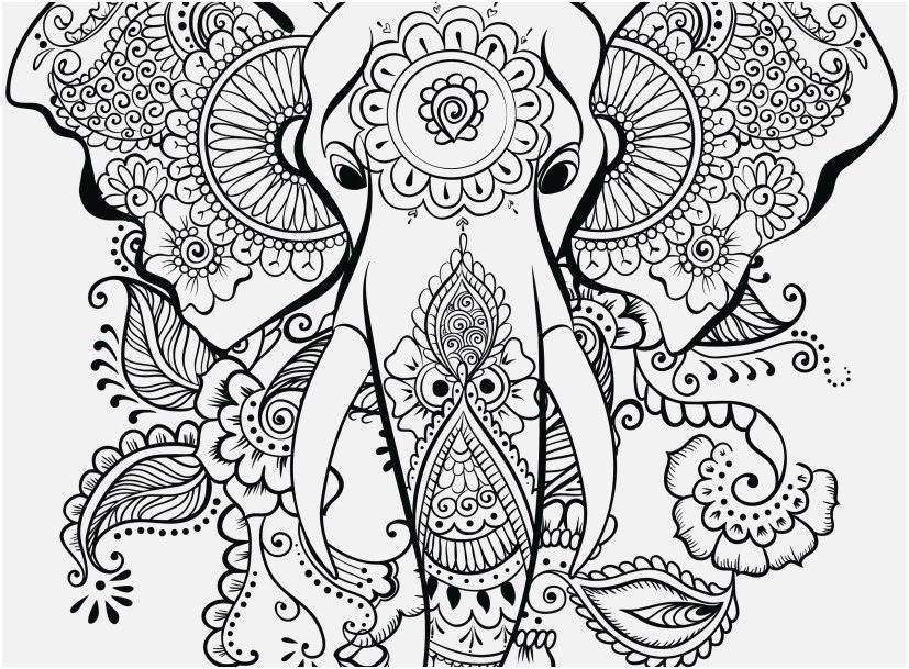 Owl Coloring Pages For Adults Picture - Whitesbelfast.com