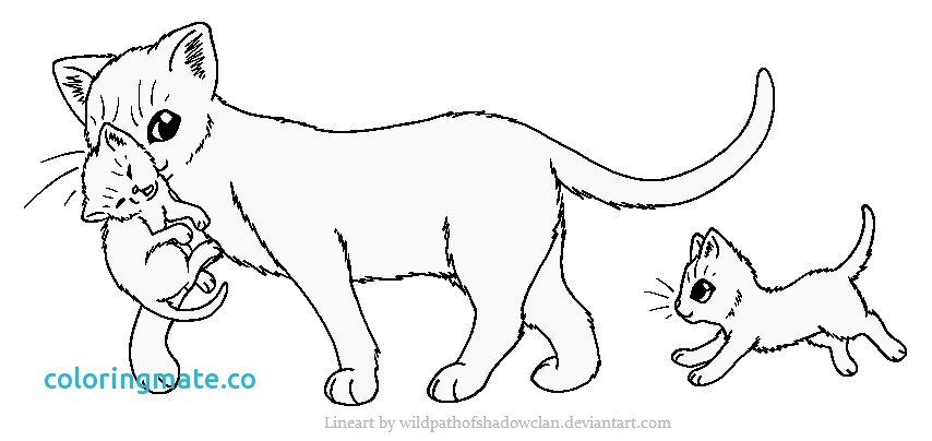 24+ Warrior Cat Coloring Page