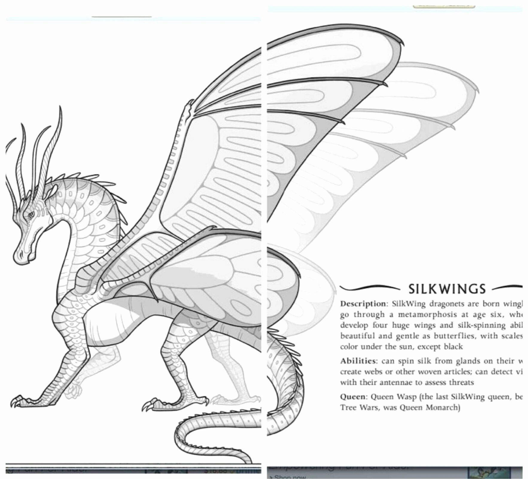 Wings Of Fire Coloring Pages Pictures Whitesbelfast